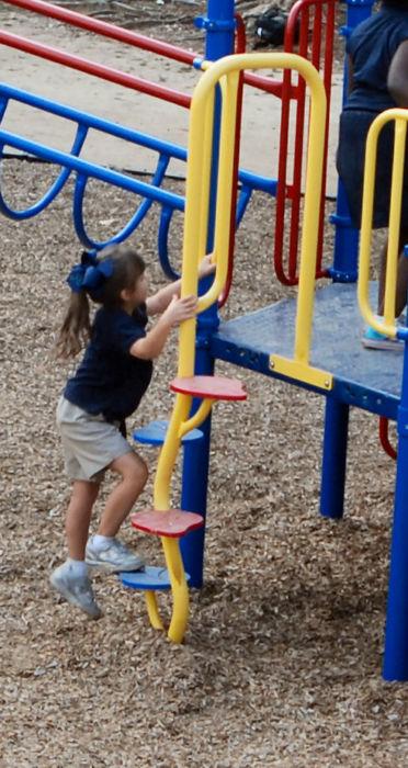 Beanstalk Playground Climber
